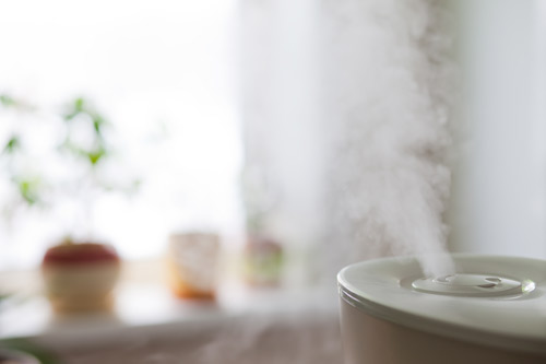 maintaining humidity in air using a humidifier